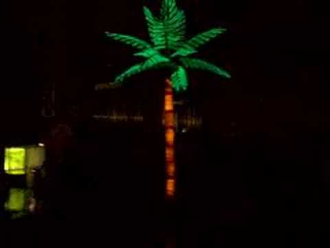 destiny 666 freakout oct 2006 004 light up palm trees the youtube