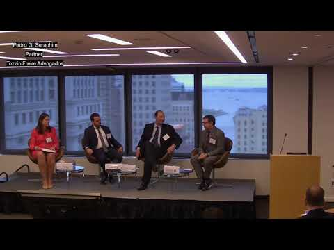 Infrastructure Opportunities In Brazil: An Update On The PPI