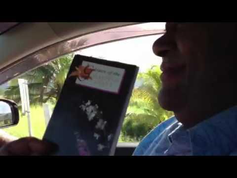 Fiji taxi drive