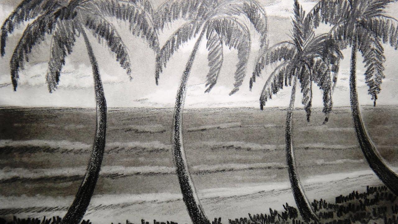 draw seashore and palm tree