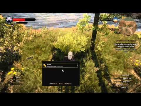 The Witcher 3 Wild Hunt Gameplay AMD Radeon R9 200 Series 3GB 384bt