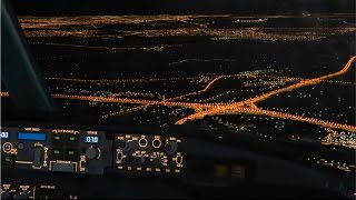 FSX 2016 | Core i7 @ 3.4 GHz | 737 EXTREME NIGHT ENVIRONMENT