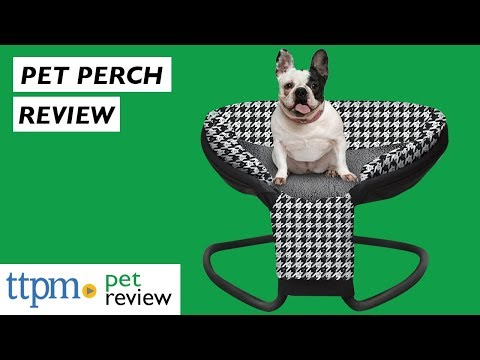 Perch Pet Nest Dog Bed Review from Perch Pet Products