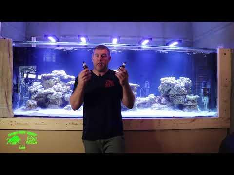 700 Gallon Reef tank cycle using Genesis Part #1