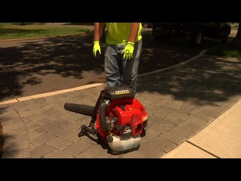 No place in civilized society for gas-powered leaf-blowers | Editorial