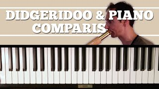Musical didgeridoo 3: piano comparison
