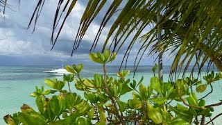 Отдых на Мальдивах(Видео с отдыха Fun Island Resort, Южный Мале Атолл Отдыхали там в 2012 году. Виды завораживали. Здесь отзыв об отдыхе:..., 2016-06-03T21:15:34.000Z)