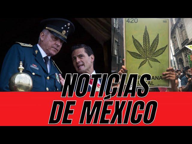 ¿Se legaliza la marihuana en México? / Cienfuegos LIBRE - El Aviso Magazine