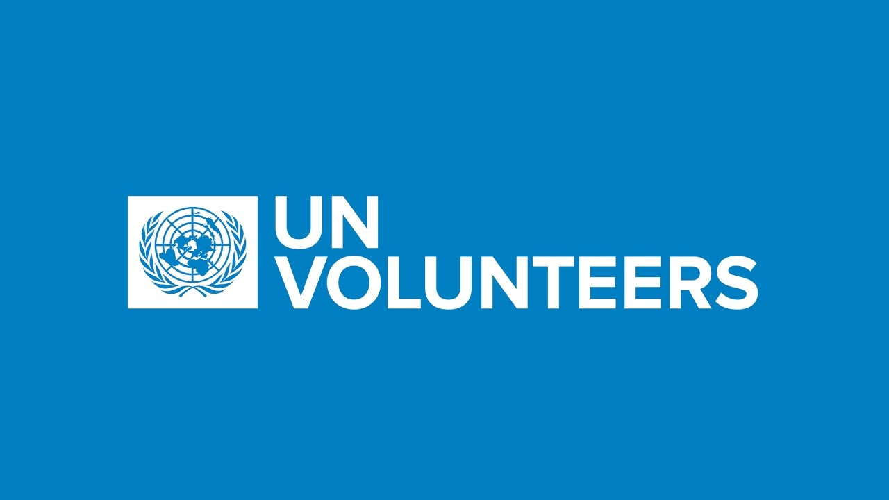 Image result for UN Paid Volunteer