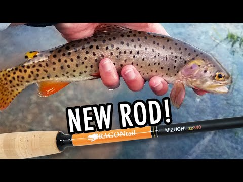 A New Rod, 2 New Species, And 3 New Creeks! (Tenkara Fly Fishing)