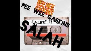 Gambar cover Pee Wee Gaskins - Salah cover Potret