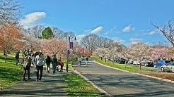 10 Best Tourist Attractions in Newark, New Jersey