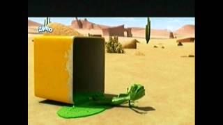 Oscar's Oasis   Yummi Oscar 1