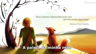 Lily Allen - Somewhere Only We Know Lyrics (Le Petit Prince )