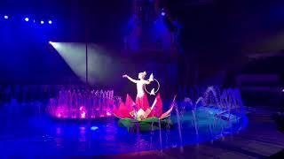 24 февраля 2019 г. Цирк на воде Новосибирск
