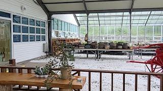 평창 자생식물원