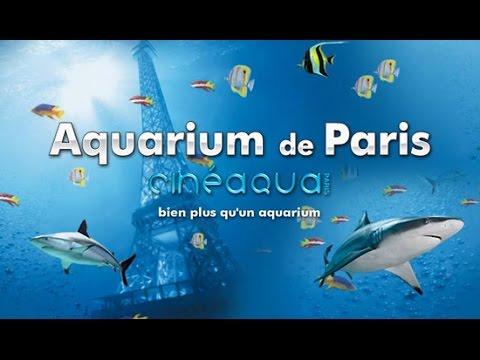 Visite de l'Aquarium de Paris
