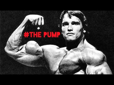 Pump Chasers – Top YouTube Videos