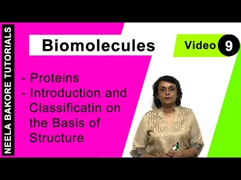 Biomolecules - Proteins - Introduction and Classification on the Basis of Structure