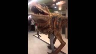 Raptor dinosaur Office prank