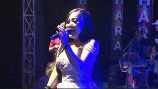 Video 09  Wong Edan Kui Bebas   Dila Aldiva - NEW SAHARA JUNI 2018 download MP3, 3GP, MP4, WEBM, AVI, FLV Agustus 2018