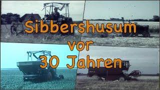 33.333 Abospezial - Sibbershusum vor 30 Jahren