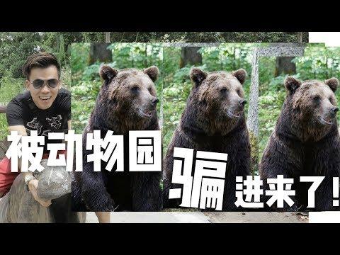 被新闻骗了我,再次回来马来西亚动物园!!! ZOO NEGARA MALAYSIA 【GARY VLOG】