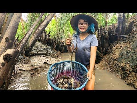 Gặp Cao Thủ Bắt Tôm Càng Xanh Dưới Sông Đầy Nước | MTTL Tập 109