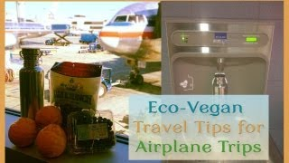 Eco-Vegan Travel Tips for Airplane Trips