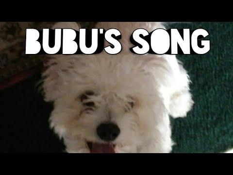 Bubu's Song
