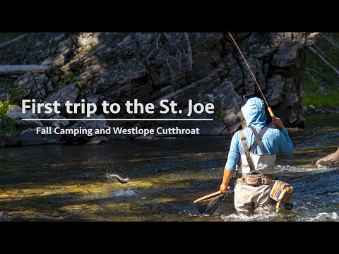 First Trip To The St. Joe River - Part 1 | Fly Fishing Film