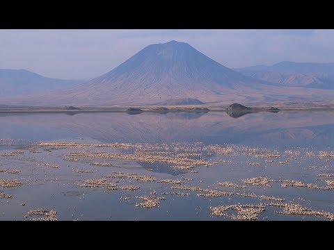 The Flamingo Factory at Lake Natron