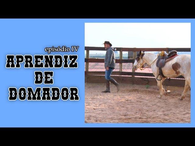 APRENDIZ DE DOMADOR  - EPISÓDIO IV