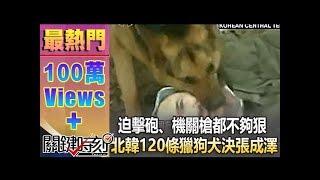 金正恩最恐怖的處刑部隊北韓軍犬隊狠咬猛撲不是開玩笑的! 來了五個日本...