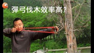 弹弓打倒一棵树要发射多少次?威力测试惊人 2018