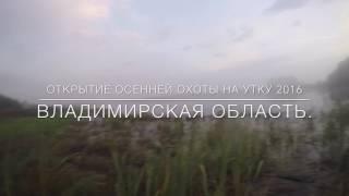 Охота на уток во Владимирской области. Открытие осенней охоты на утку 2016.