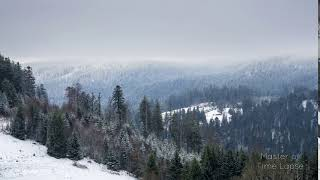 247 Time Lapse Black Forest Winter Snow Valley | Zeitraffer Schwarzwald Tal Schnee Berge Bäume 4K