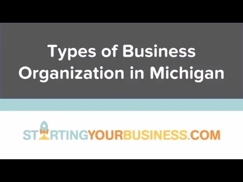 Types of Business Organization in Michigan - Starting a Business in Michigan