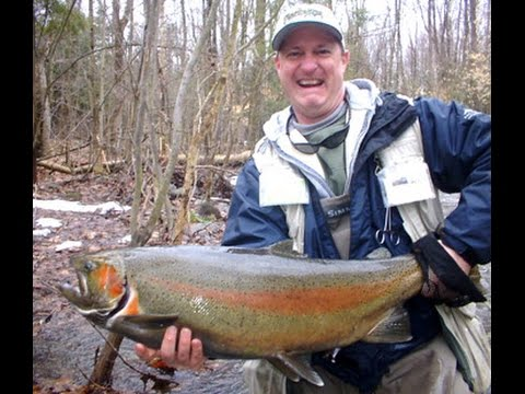 pulaski ny salmon river fishing report big run salmon