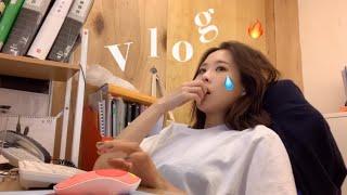 룡즈 vlog_ 사무직 직장인 브이로그/ 6년차 직장인…