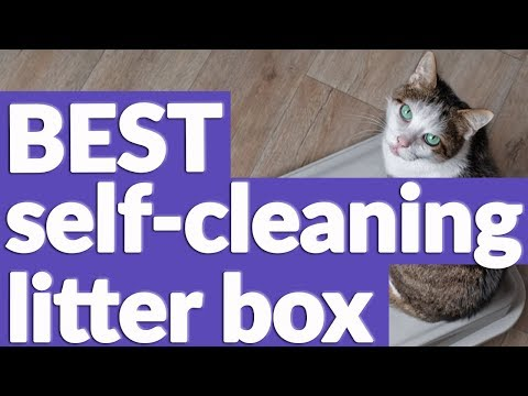 Best Self Cleaning Litter Box In 2019   9 TOP RATED Self Cleaning Litter Boxes