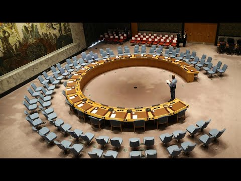 مجلس الأمن يعقد اجتماعا افتراضيا الأحد حول النزاع الإسرائيلي الفلسطيني  - نشر قبل 2 ساعة
