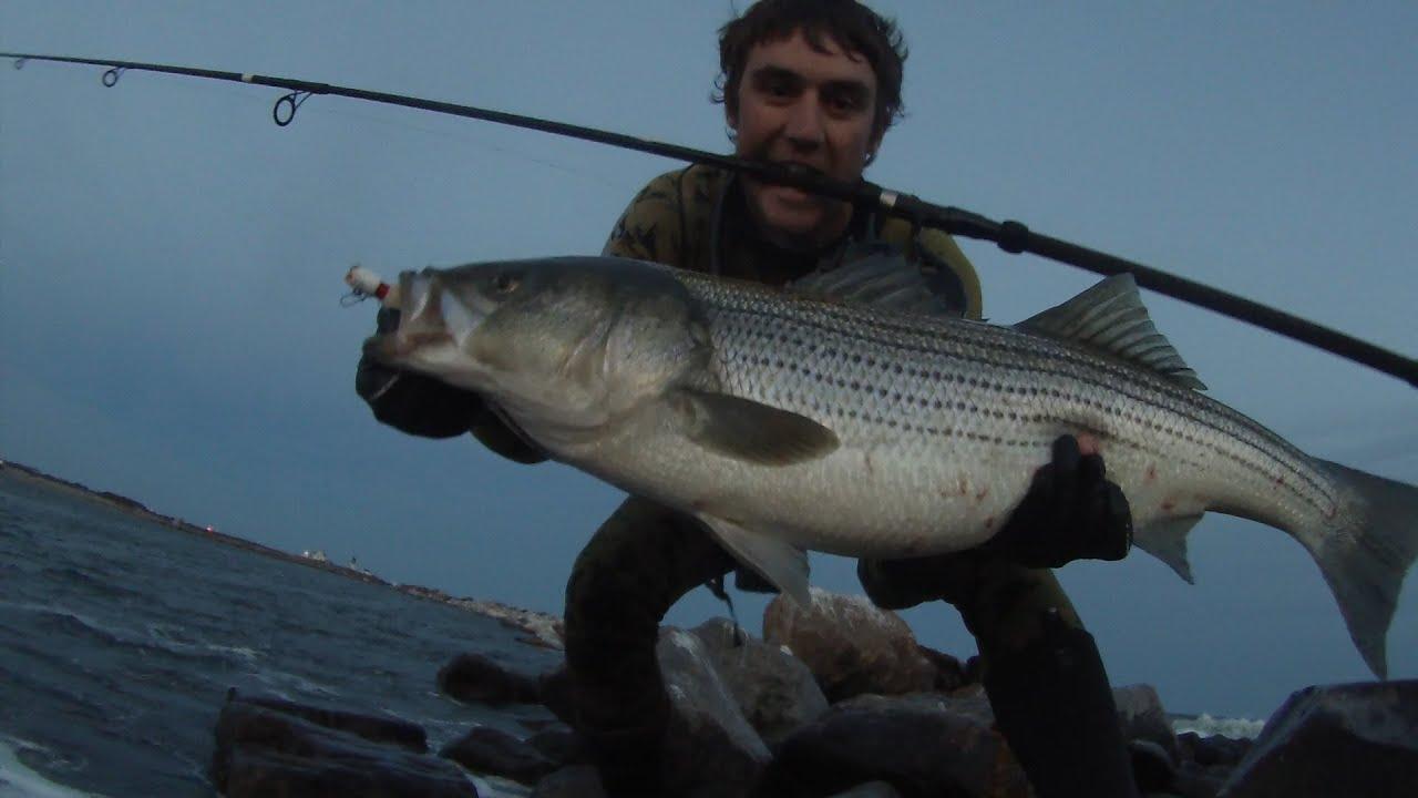 Rhode island stripers 20 pound bass on bucktail jigs for Striper fishing ri