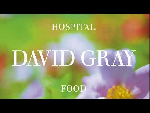 David Gray - Crimson Lightning (Official Audio)