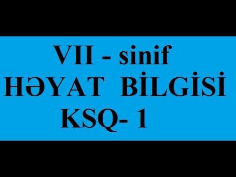 5 ci sinif Həyat bilgisi mövzu 1.
