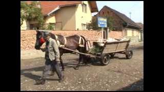 Carta, impressies van een Roemeens dorp