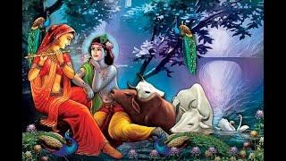 Achyutam Keshavam Krishna Damodaram - Cover Bhajan by Navneet