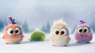 'Angry Birds в кино': с наступающим!