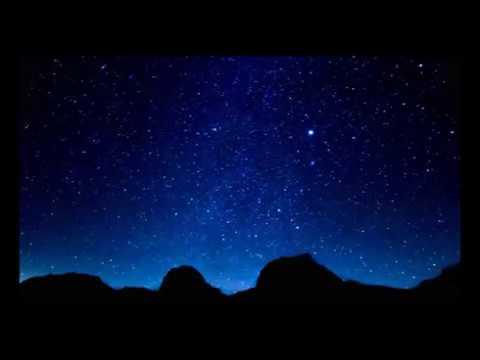 Robert Logan: 'Metazoa'  music video