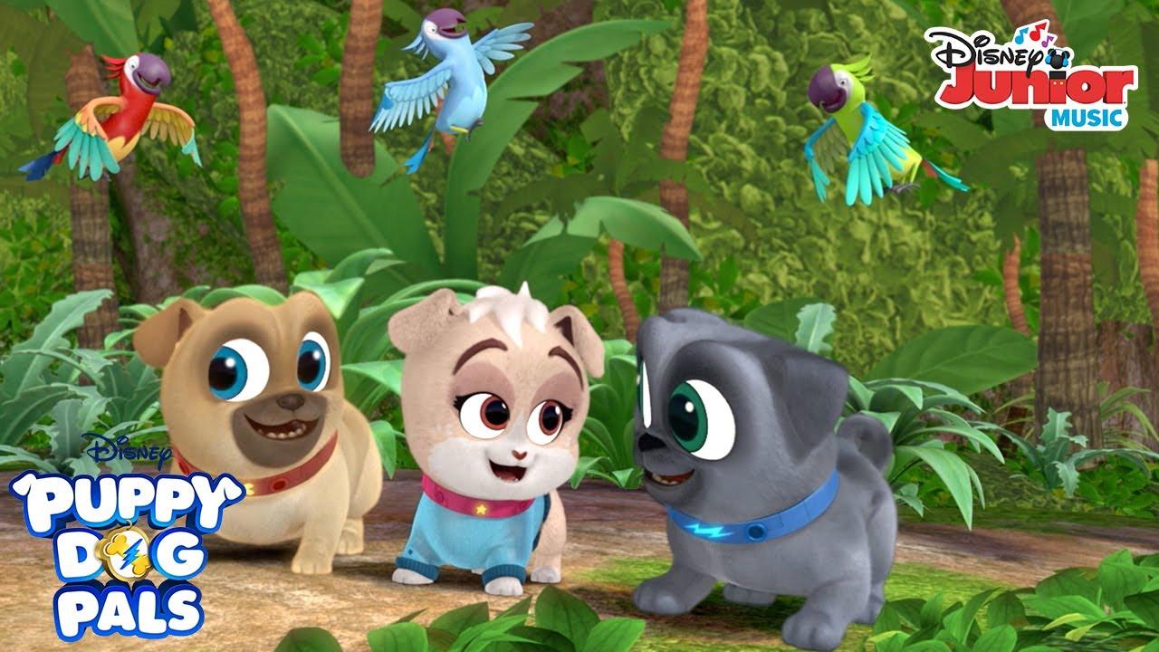 Pups On An Island Music Video Puppy Dog Pals Disney Junior Youtube